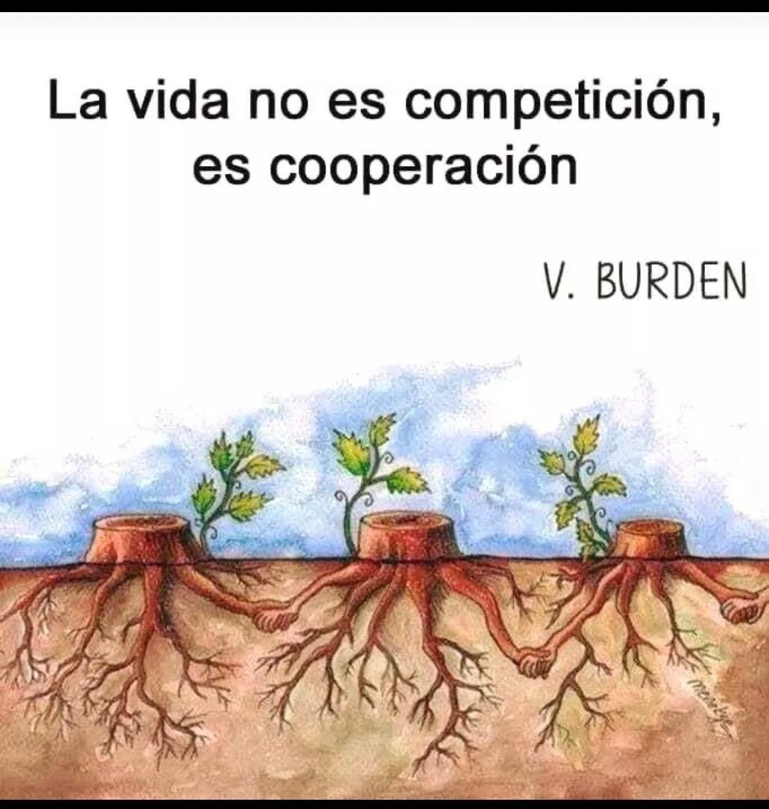 La Vida Es Cooperación Frases Profundas Vida Y Frases