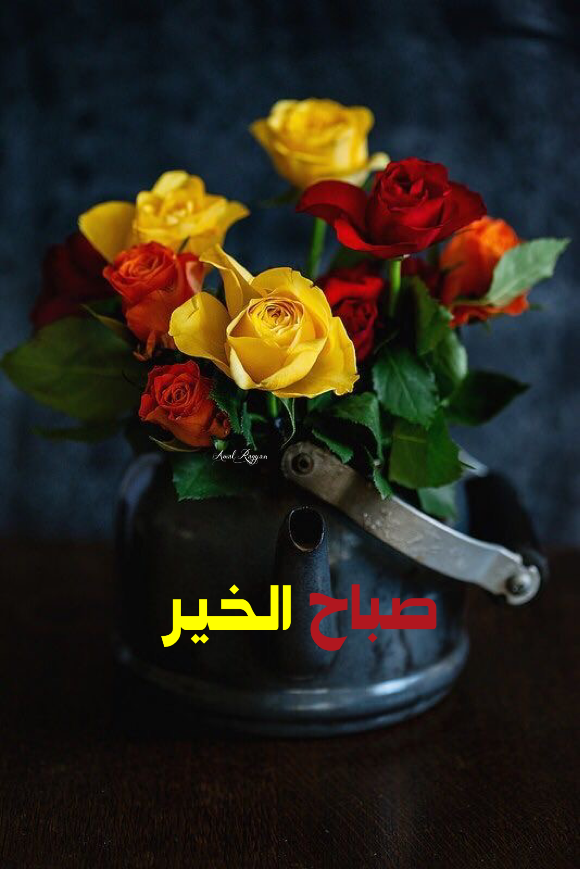 صباح الخير Beautiful Morning Messages Good Morning Greetings Morning Images