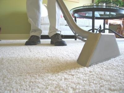 Borax to Clean Carpet | White vinegar, Vinegar and Cups