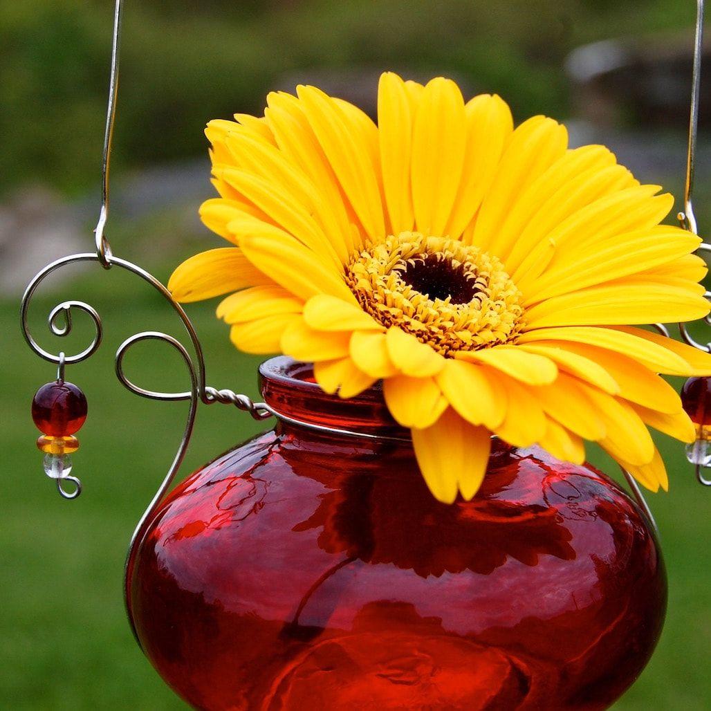 Bean jar hanging vase hanging vase designs by the bottle lady bean jar hanging vase reviewsmspy