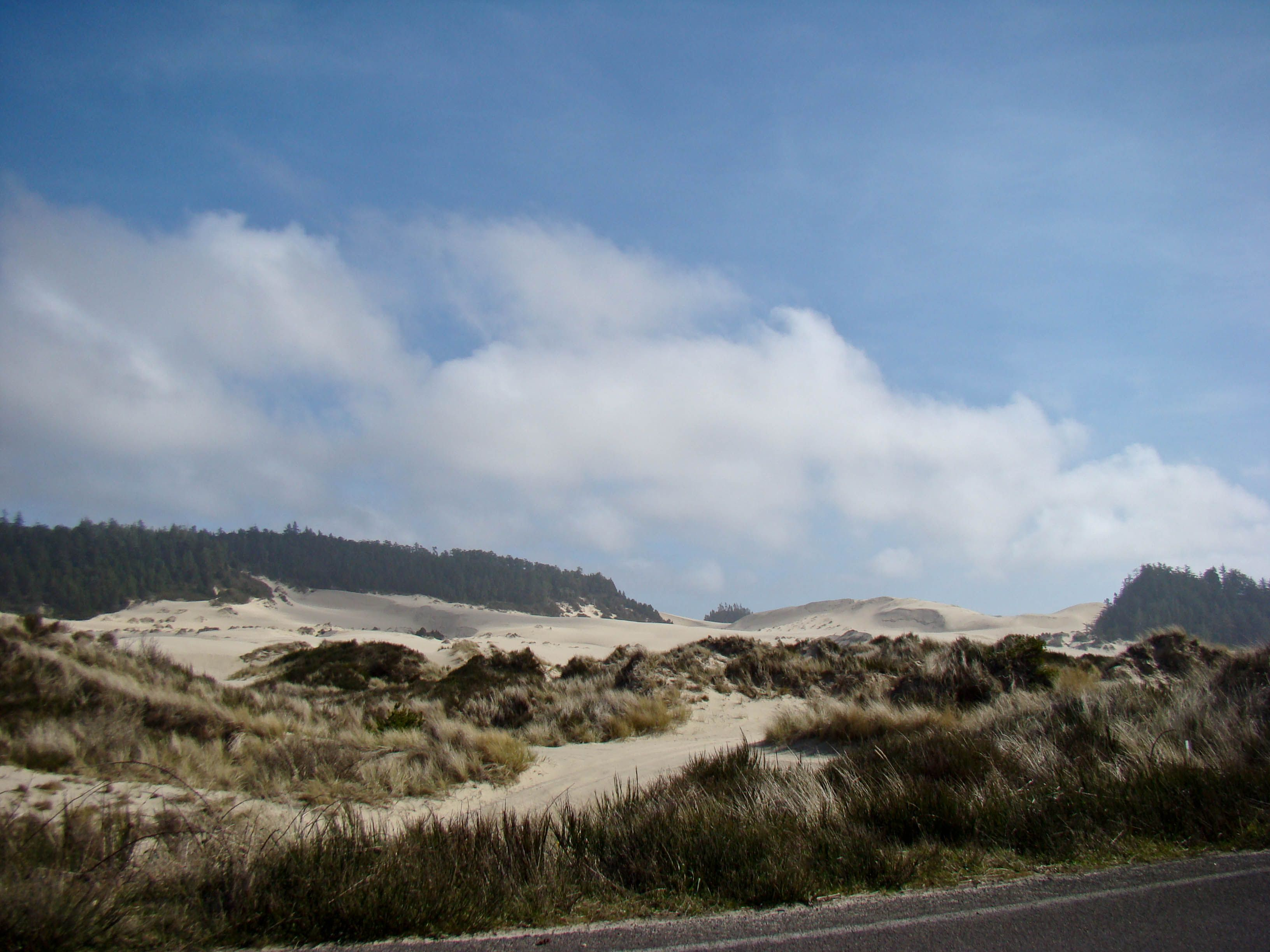 Oregon Dunes National Recreation Area - March 8th 2012