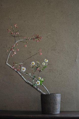 Home Garden: un angolo giapponese – una Effe qualunque - - Giardino Photo Blog