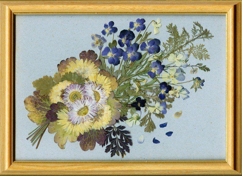 Картина из гербария 100 ПОДЕЛОК 55