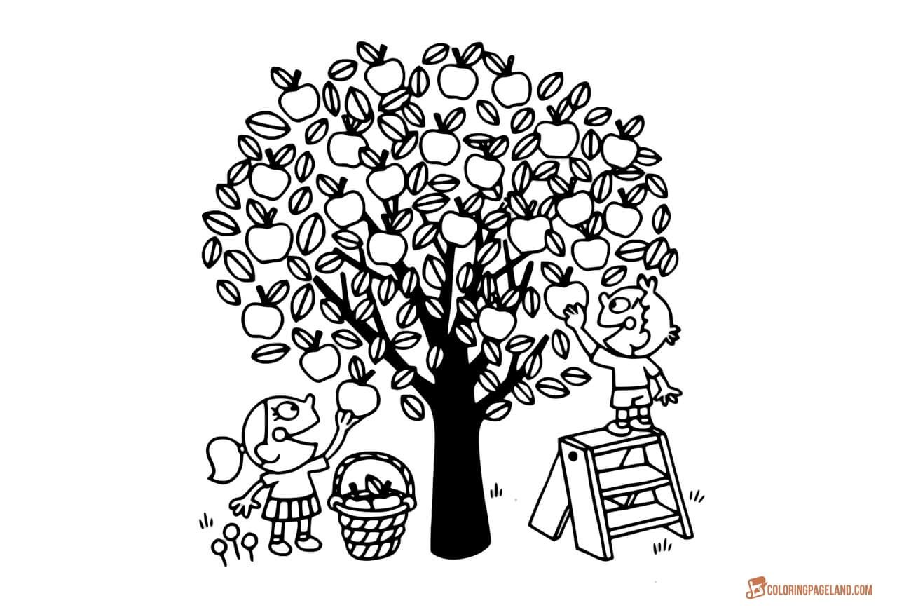 Apple Tree Coloring Pages Downloadable and Printable