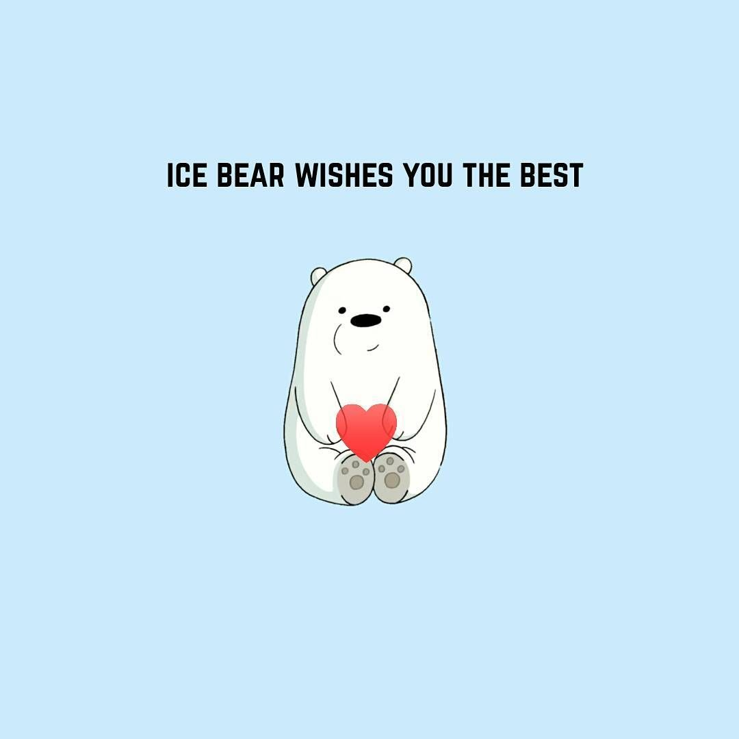 188 mil me gusta 386 comentarios we bare bears webarebears 188 mil me gusta 386 comentarios we bare bears webarebearsofficial en instagram tag a person you wish all luck to sweet icebear voltagebd Images