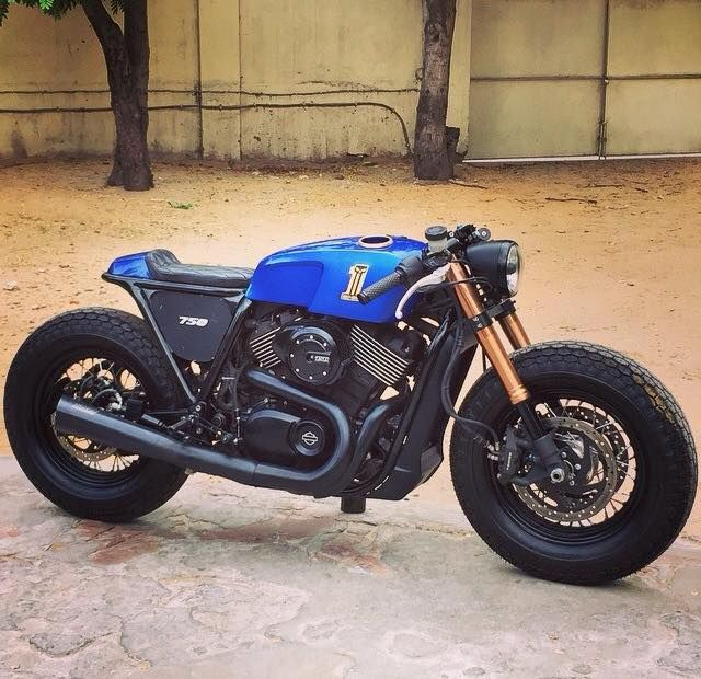 Cars Motorcycles That I Love: Harley Street 750 - Rajputana Customs