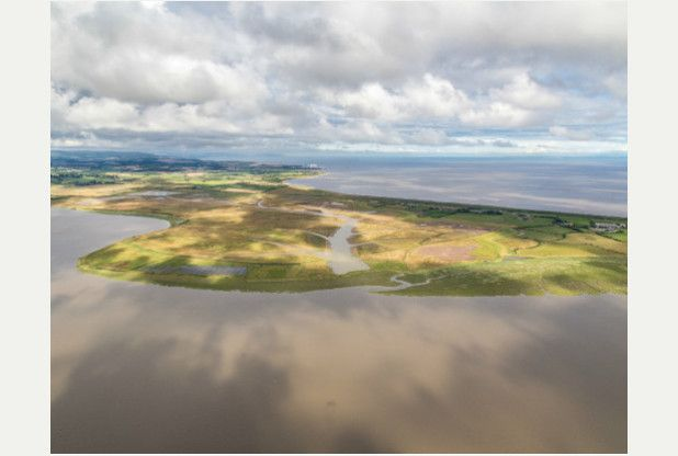 Environment Agency set to flood Somerset and create the UK's largest wetland