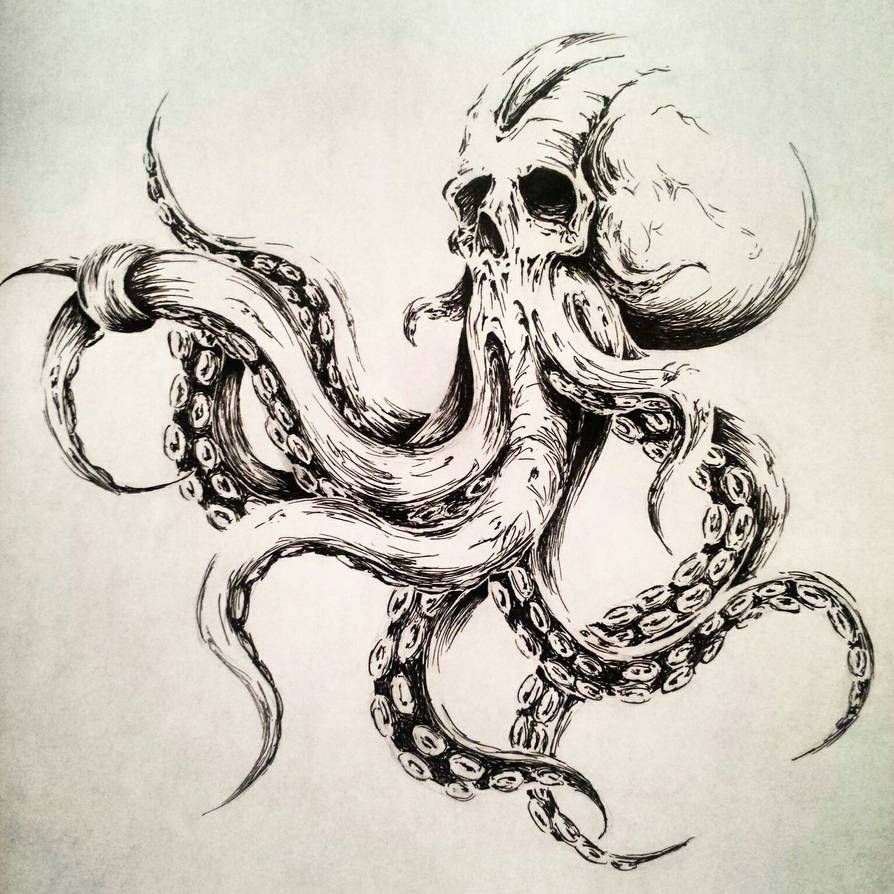 Photo of Octopus illustration  by MelkorBaulgir on DeviantArt