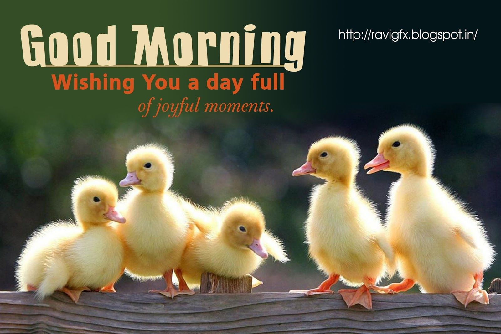 Good morning quotes wishes greetings sayings sms messages happy good good morning quotes wishes greetings sayings sms messages kristyandbryce Choice Image