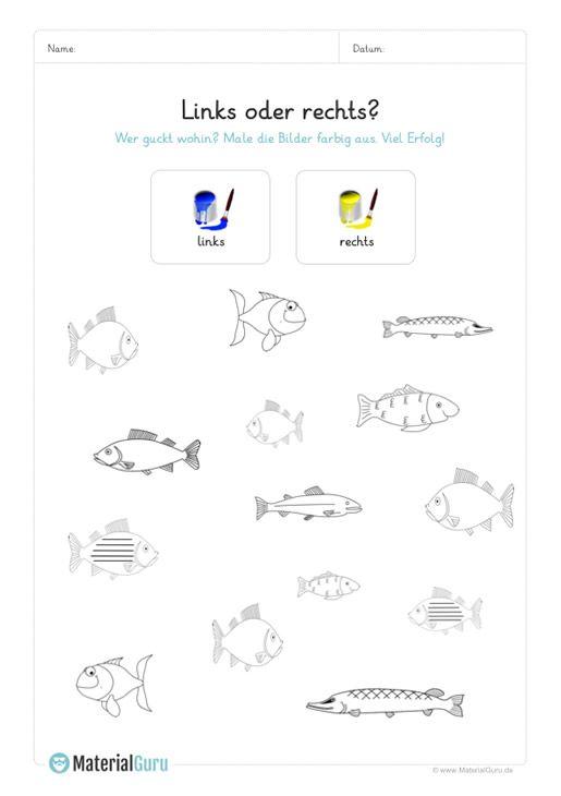 ein kostenloses arbeitsblatt für die vorschule auf dem