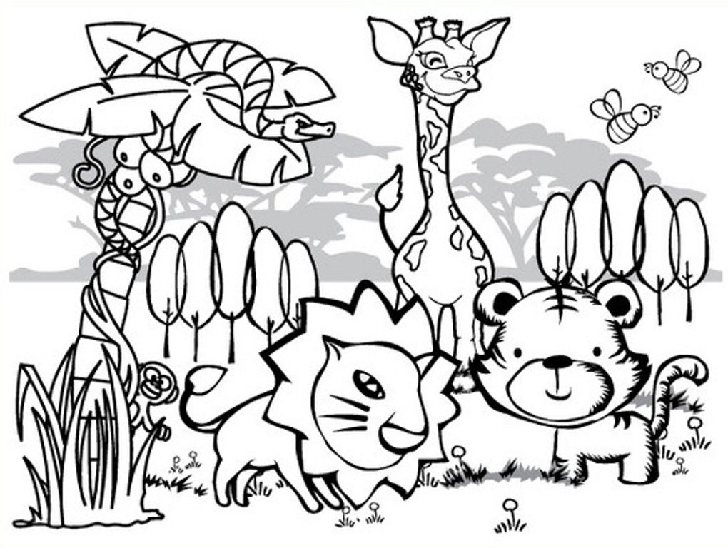 Coloring Pages Rainforest Farm Animal Coloring Pages Zoo Animal Coloring Pages Jungle Coloring Pages