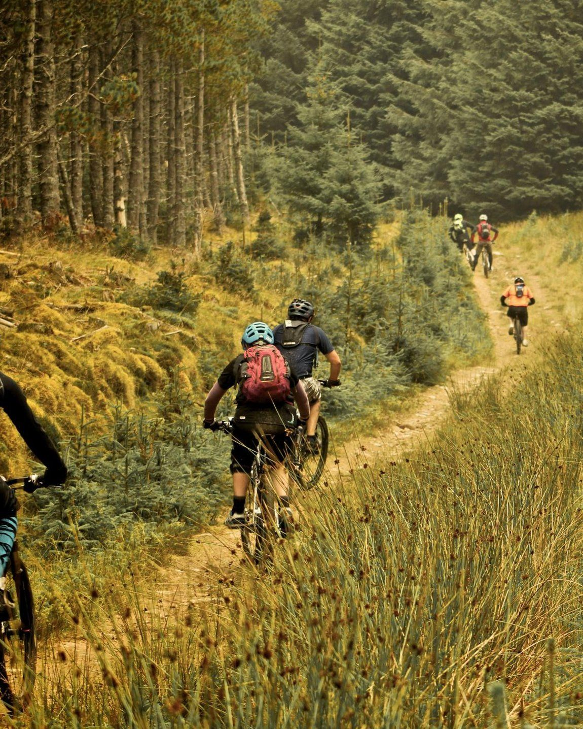 The Uk S Best Natural Trails Mountain Biking Mongoose Mountain