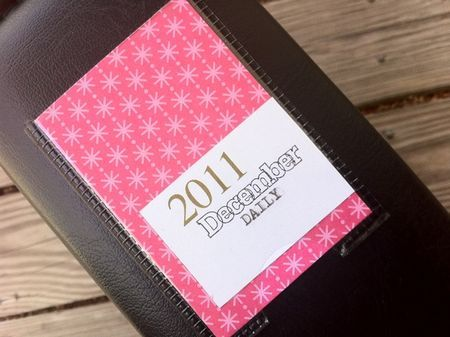 I would never stick to making a daily journal but this would be a neat way to note special days throughout a year or if you have a baby to note their milestones along the way... something different from the traditional baby book.