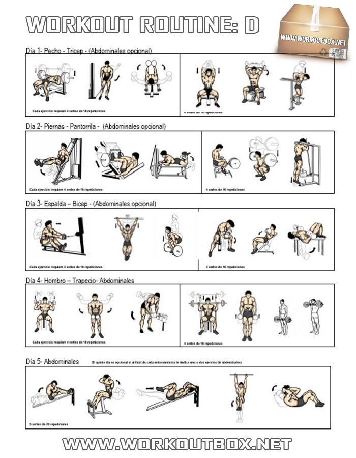Pin by my gustafsson on gym workout s pinterest the o