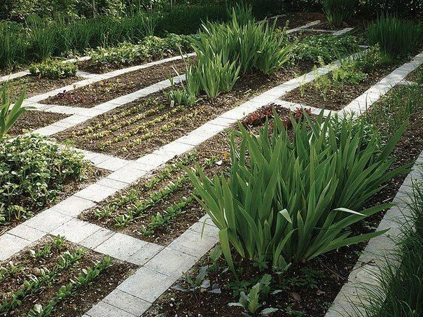 jcgardendesign: Garden Design Jobs Scotland