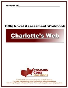 The Most Rigorous Novel Study Assessment Worksheets On The Market
