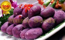 1bag=20pcs purple sweet potato SEEDS bonsai RARE exotic delicious MINI SWEET fruit vegetable seeds home & garden free shipping(China (Mainland))