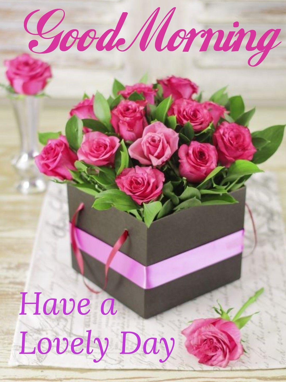 Good Morning Greetings Felicitaciones Para Dia El Dias De La