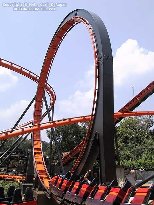 Scorpion Bush Gardens Africa Tampa Fl Roller Coasters Busch