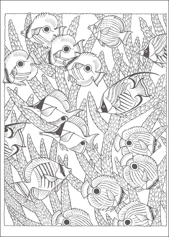 Nature Scapes Coloring Books Additional Photo Inside Page Coloring Books Creative Haven Coloring Books Fish Coloring Page
