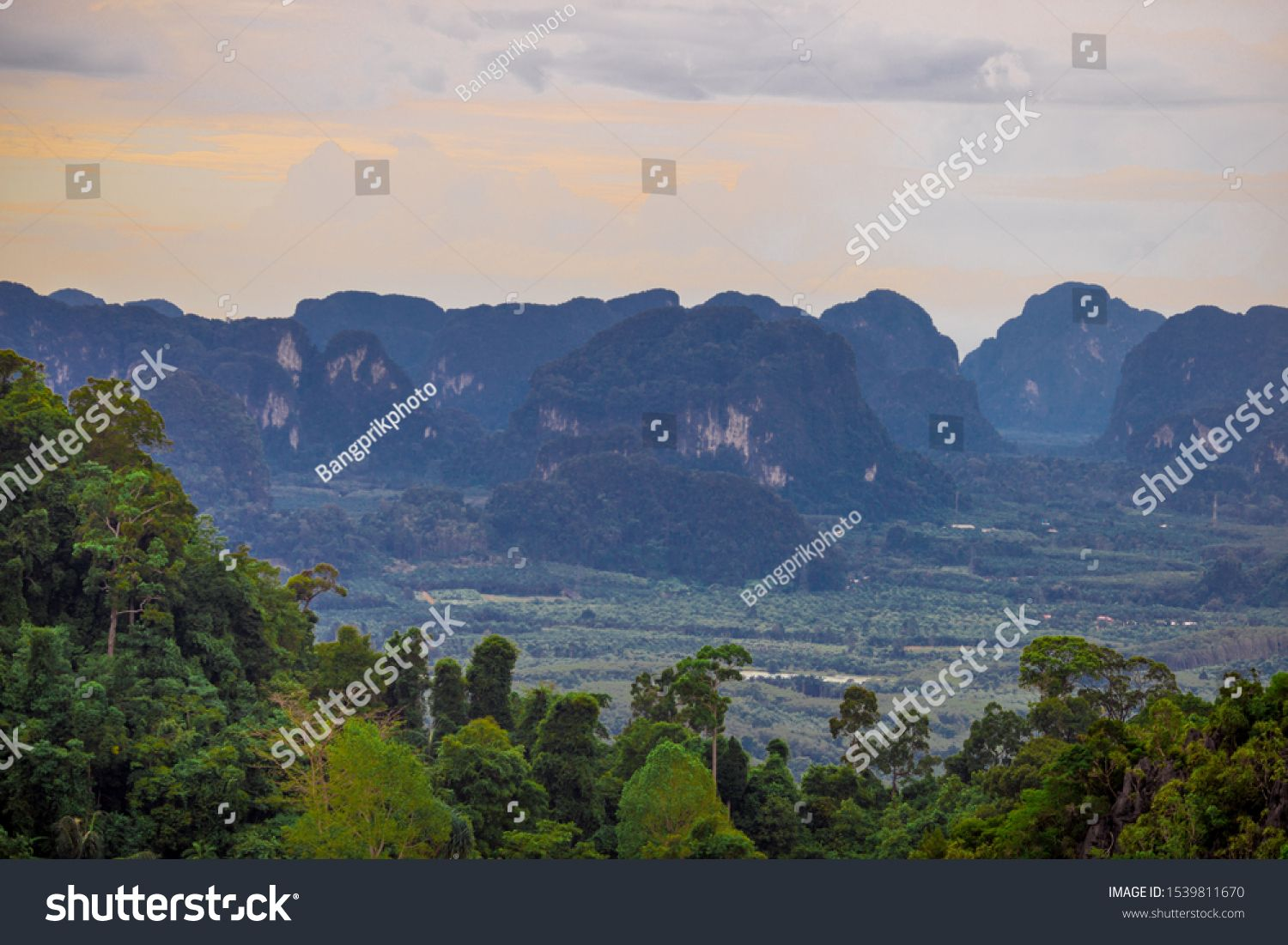 Panorama nature background on high mountains, various tree species and forest abundance, blurred wind, fresh air and cool while traveling nature studies. #Ad , #Aff, #tree#mountains#forest#species