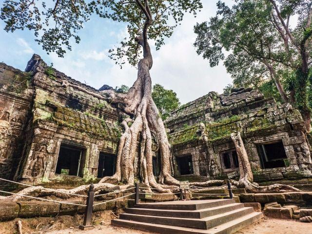 Resultado de imagem para camboja
