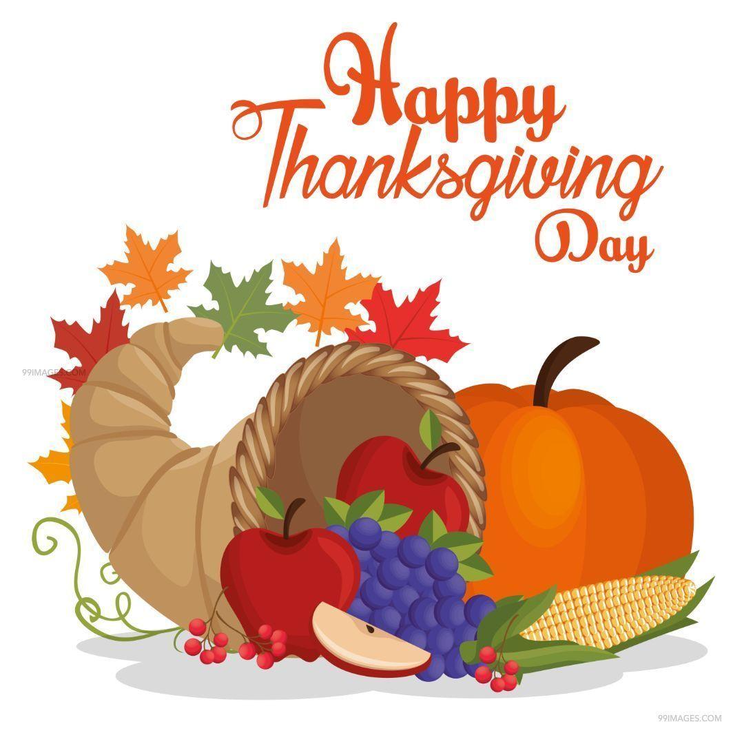 [28th November 2019] Beautiful Happy Thanksgiving Day