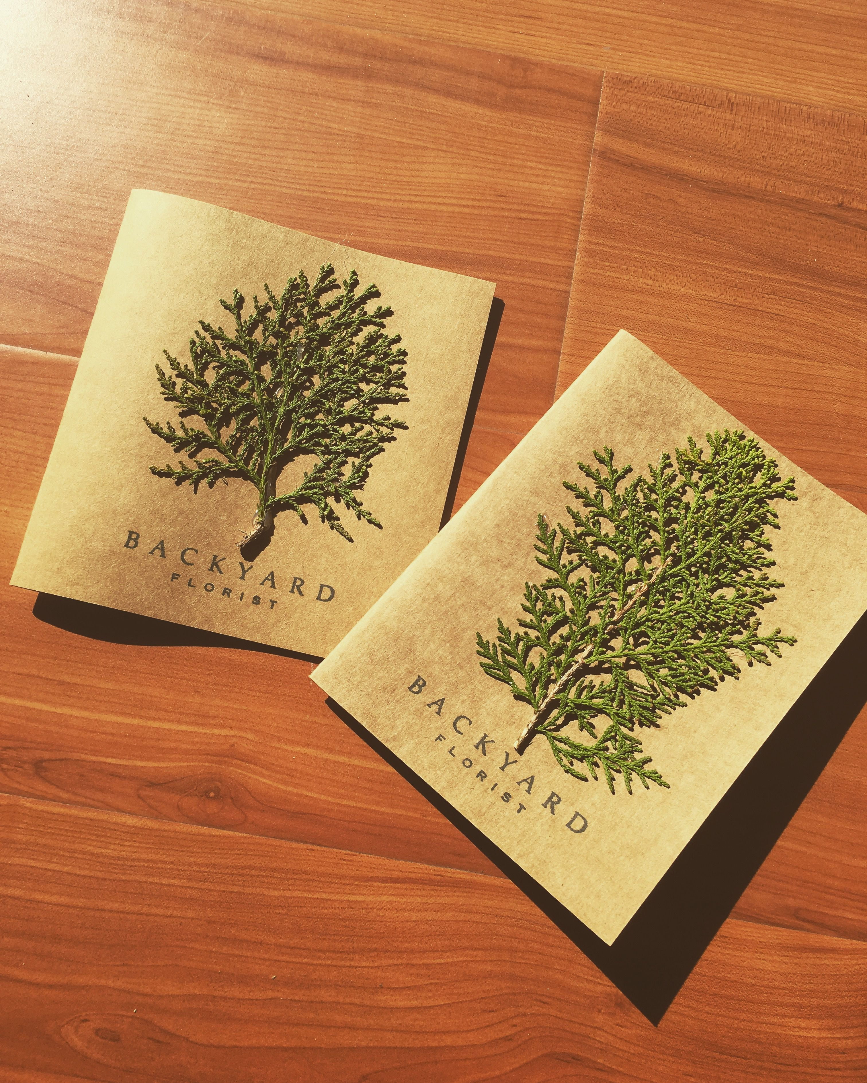Greeting Card Handmade Greeting Card Cypress Leaves Card Blank