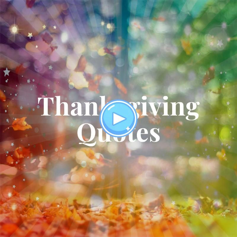 Gracious 150 Thanksgiving Quotes That Will Make You Feel Goodness Gracious 150 Thanksgiving Quotes That Will Make You FeelGoodness Gracious 150 Thanksgiving Quotes That W...