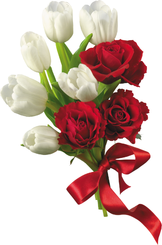 White Tulips and Red Roses Flower Bouquet PNG Clipart | Dream ...