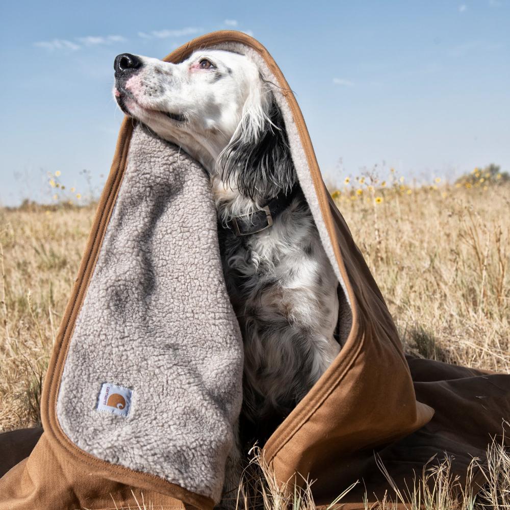 Carhartt Dog Blanket, Brown in 2020 Dog