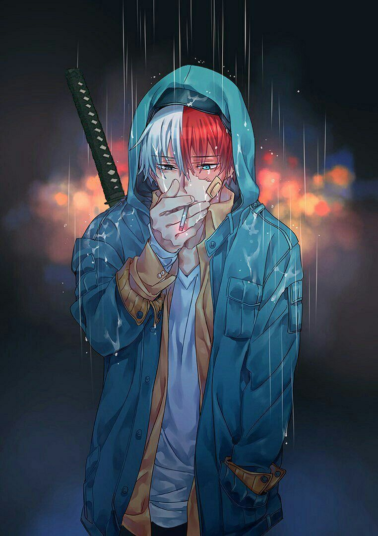 Pin de ねこあい en Todoroki Personajes de anime, Dibujos de