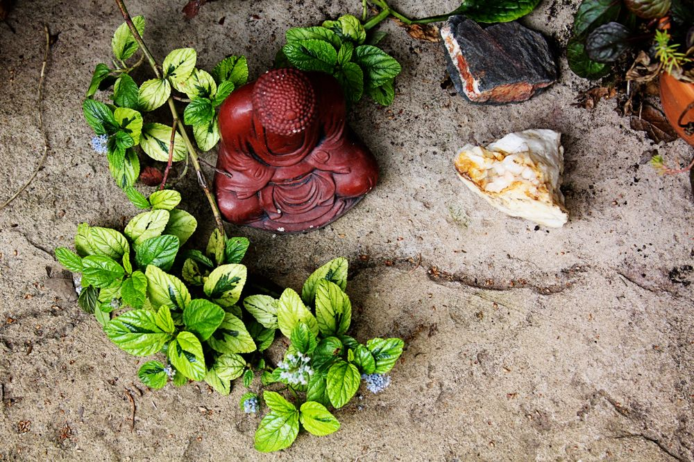 The Value of Meditation fine art photo print by Jessica Nichols