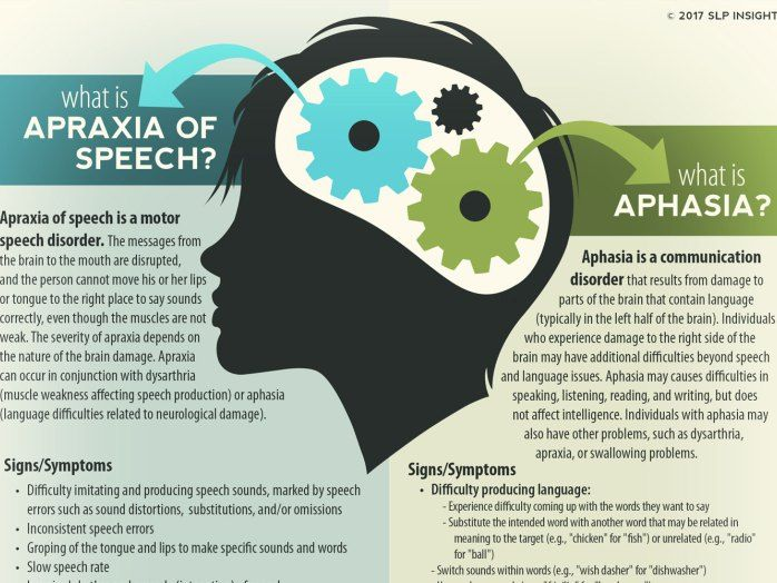 SLP Insights - Apraxia of speech and aphasia handout