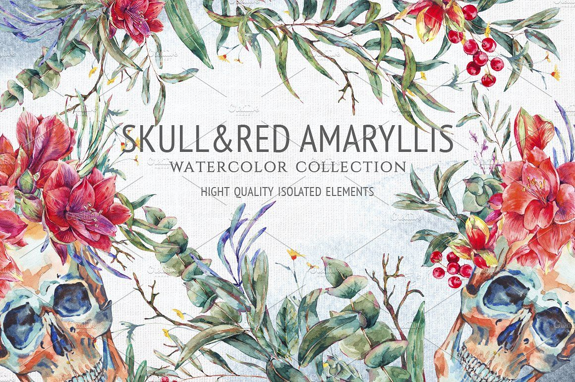 Watercolor skull and red amaryllis bouquetcardsseamlessFloral