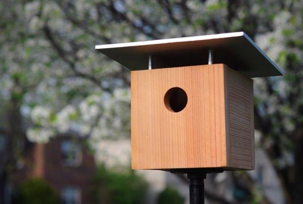 Vogelhaus selber bauen einfacher Bauplan