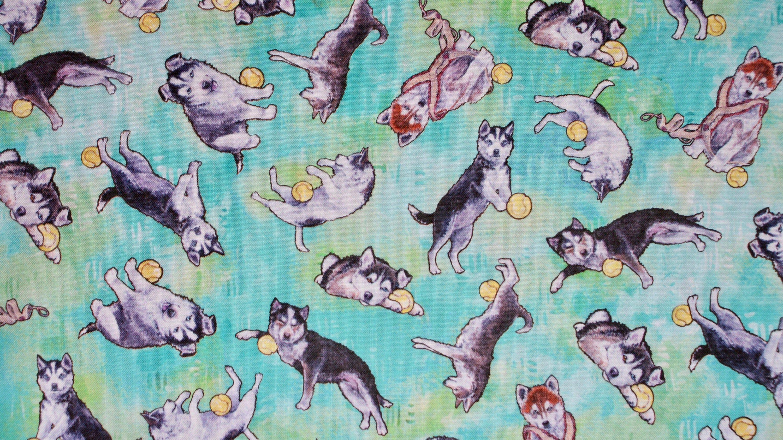 Husky, Welpen Hunde Baumwollstoff, Alaska Husky Baby's in