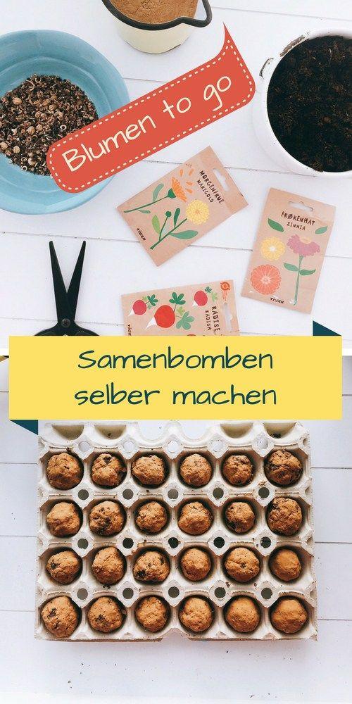 Photo of DIY Frühling – Samenbomben selber machen, Blumenwiese to go, Basteln im Frühling