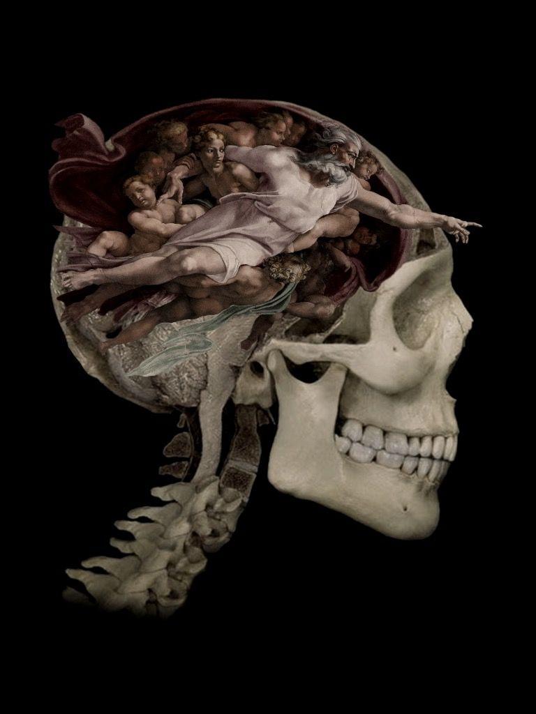 Art Skull Art Image