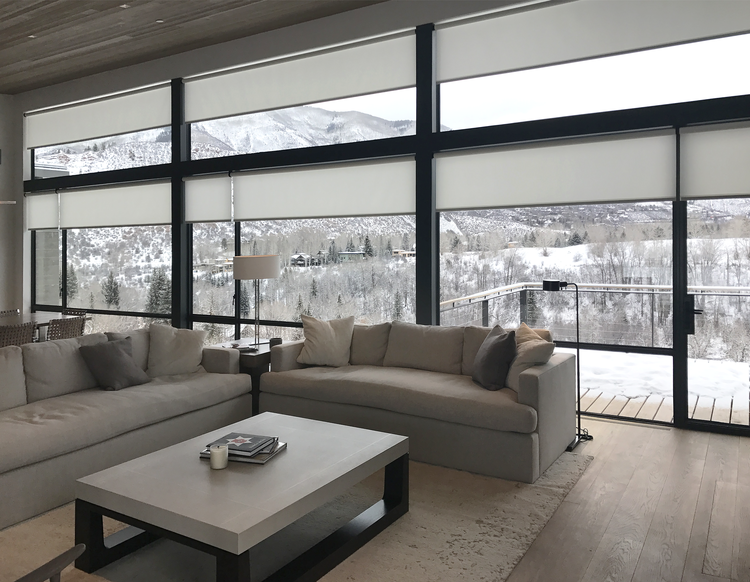 D Series J Geiger Motorized Shades Light Filmy Shade That Lets In Light And Allows Shadows To Be Seen But Still Offers Design Window Shades Interior Design