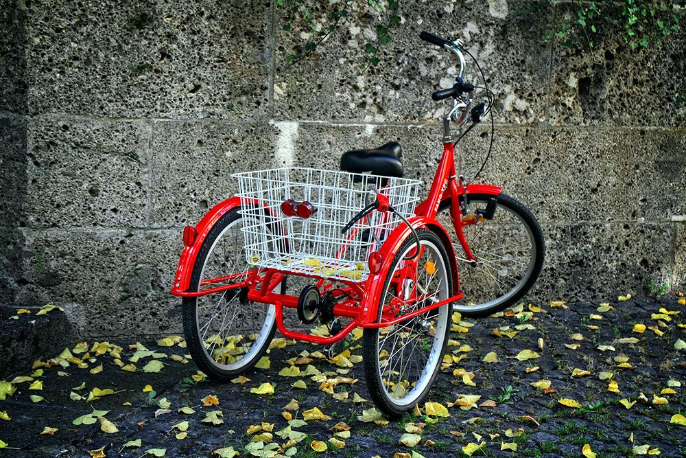 The 6 Best Three Wheel Bikes For Seniors In 2020 Adult Tricycle