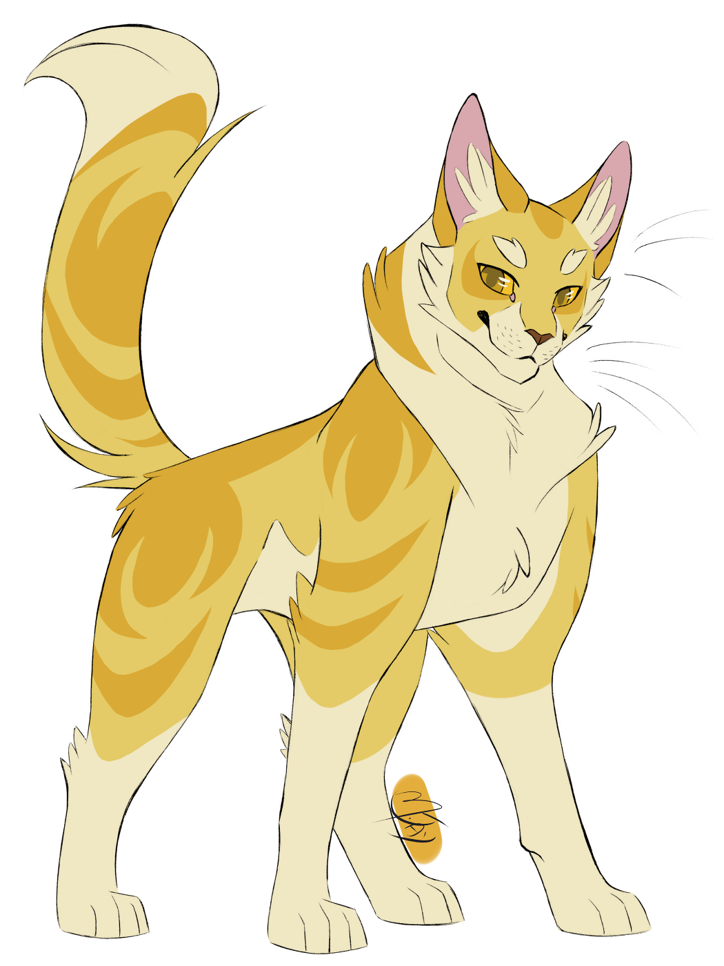 100 Warrior Cats Challenge 25