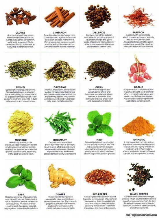 Healing properties of herbs via topoftheline99.com