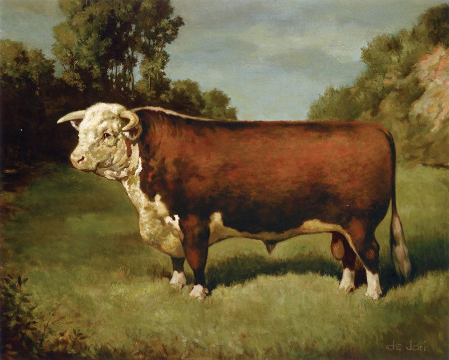"""CATTLE BLACK ANGUS BULL  on One 16 Inch Fabric Panel to Sew Pic is 8/"""" x 11/""""."""