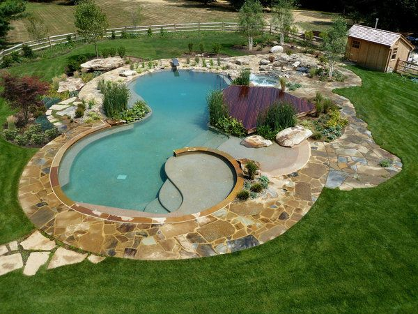 Natural Swimming Ponds Do Not Need Biweekly Visits From A Pool Professional To Add Chemicals