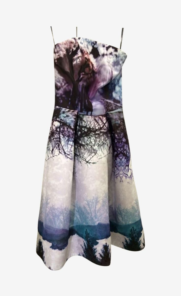 Mary Katrantzou Multi Dress