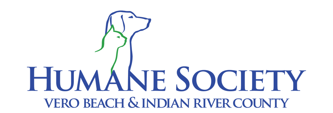 Humane Society Of Vero Beach Indian River County Dog Adoption