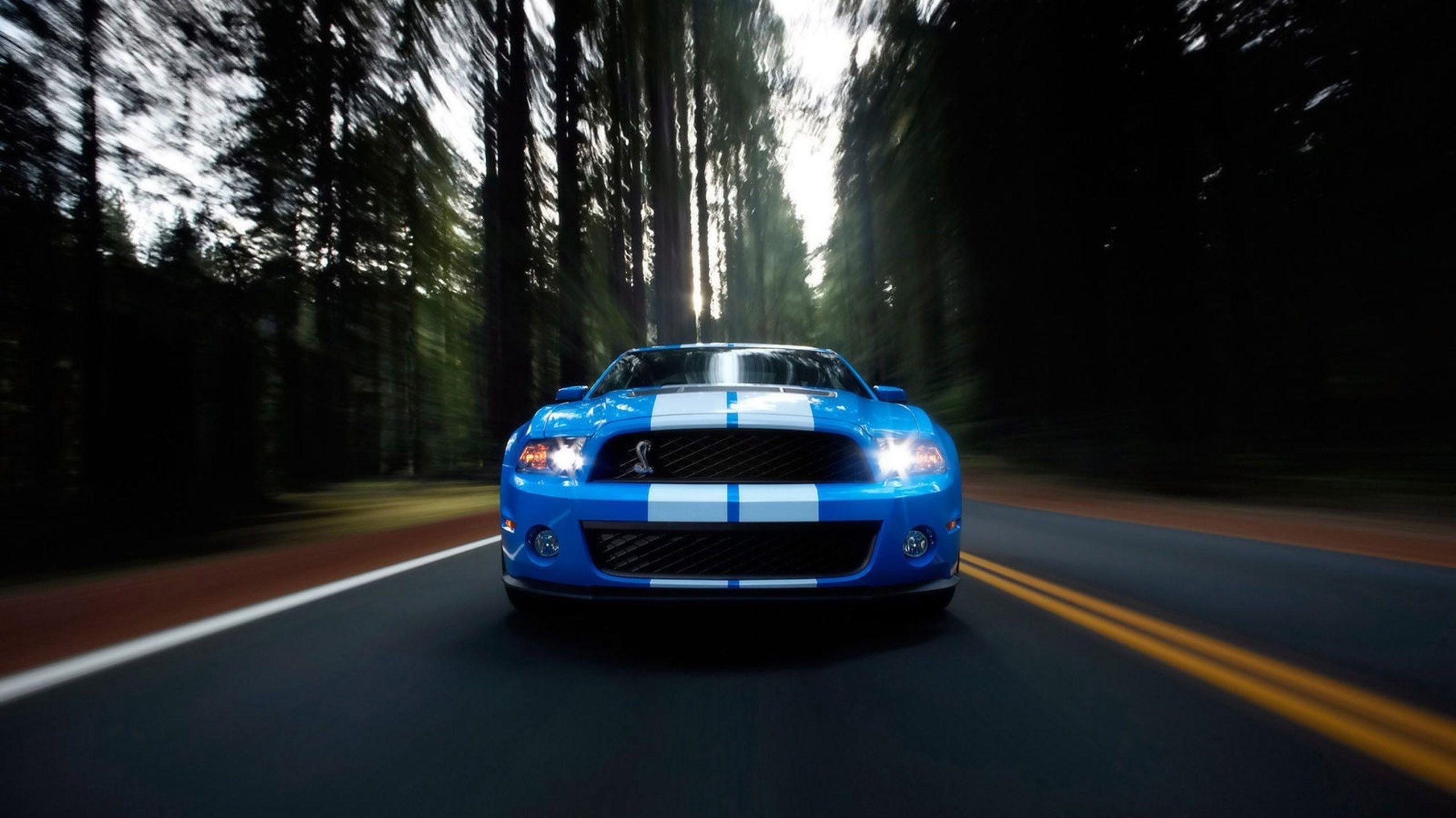 Hd D Mac Car Wallpapers Download 2560 1440 Car Wallpapers For Mac 47 Wallpapers Adorable Wallpapers Ford Mustang Ford Mustang Shelby Ford Mustang Shelby Gt