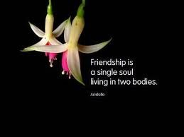 friends quotes - Google Search