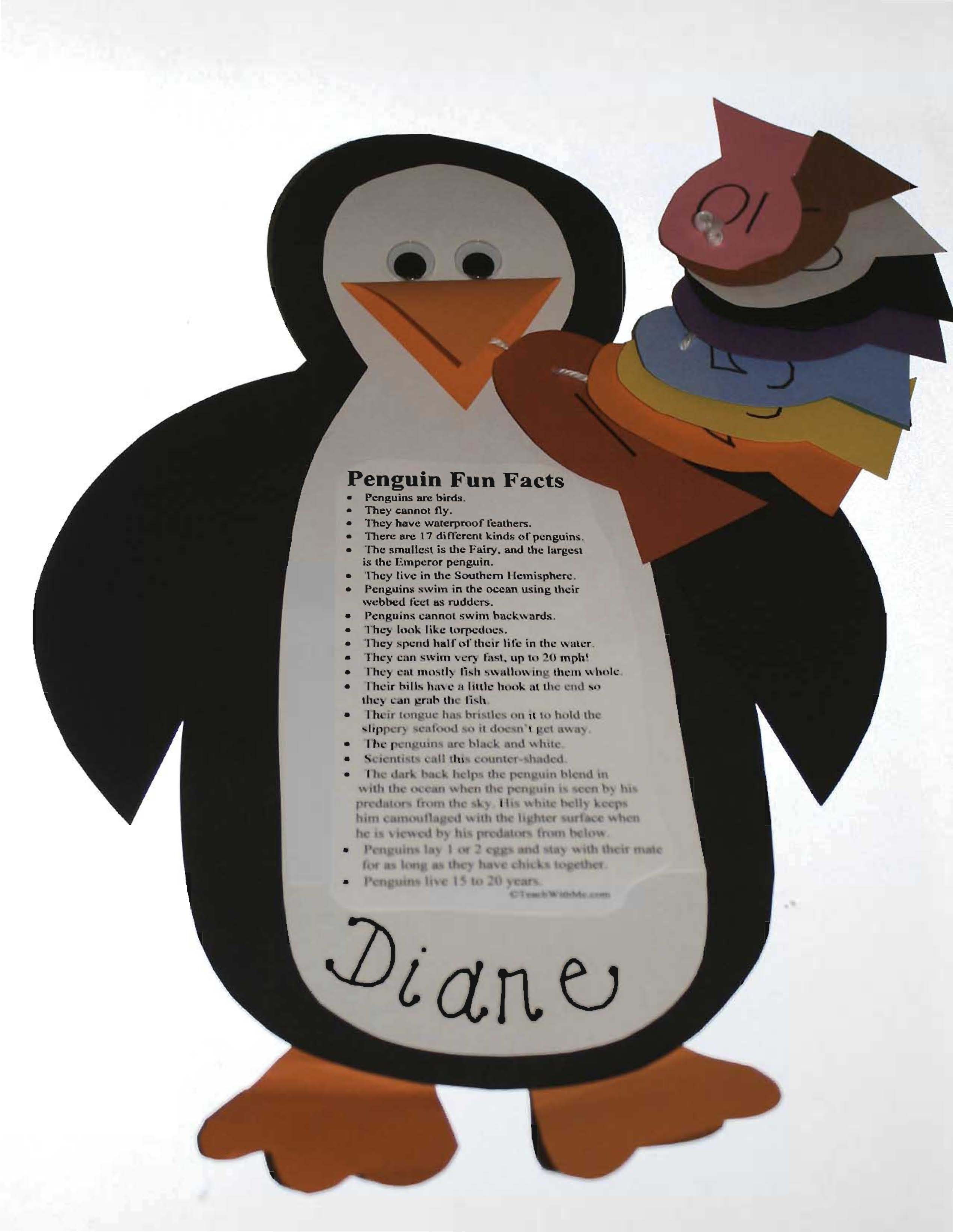 Studying Shapes With Penguins